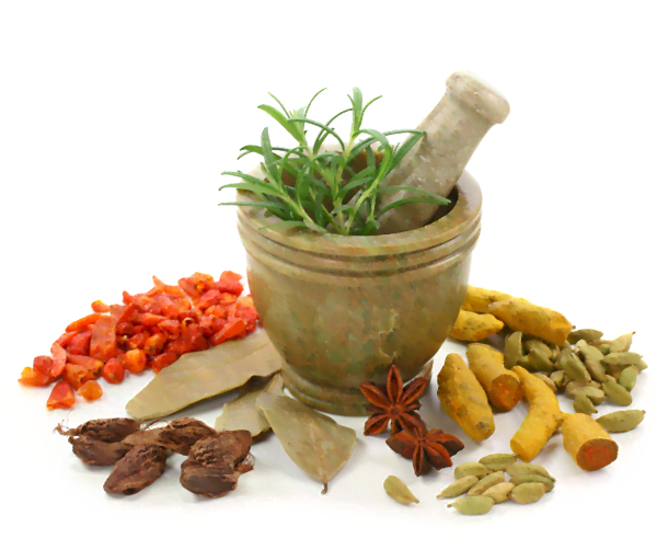 best ayurvedic hospital in kochi